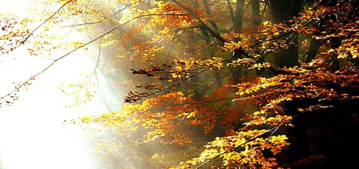 equinoxe-automne